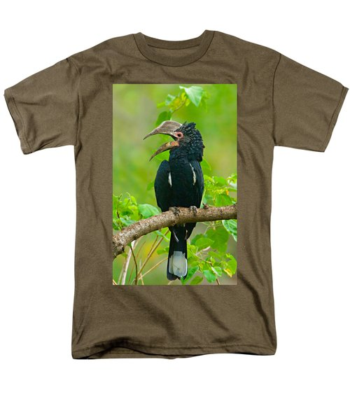 Silvery-cheeked Hornbill Perching Men's T-Shirt  (Regular Fit) by Panoramic Images