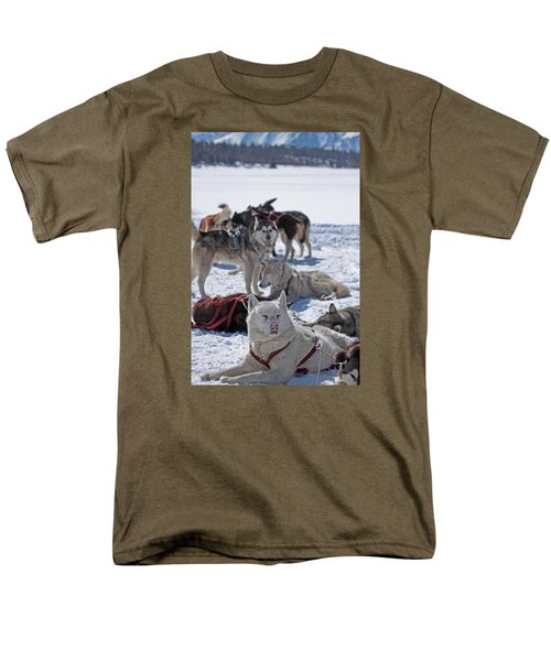Sled Dogs Men's T-Shirt  (Regular Fit) by Duncan Selby