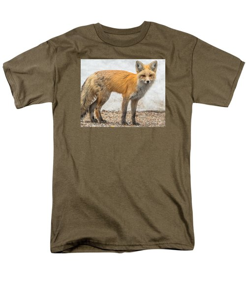 Smart Like A Fox Men's T-Shirt  (Regular Fit) by Yeates Photography