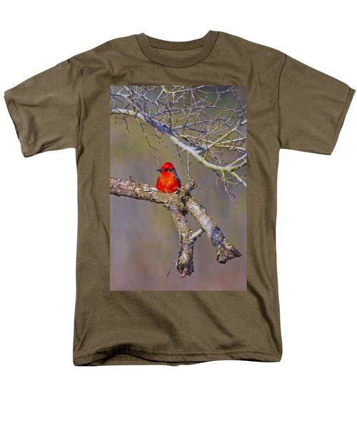 The Scarlet Letter Men's T-Shirt  (Regular Fit) by Gary Holmes