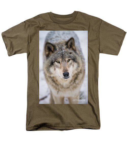 Timber Wolf Pictures 254 Men's T-Shirt  (Regular Fit) by Wolves Only