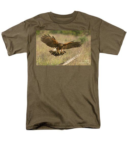 Wild Harris Hawk Landing Men's T-Shirt  (Regular Fit) by Dave Welling