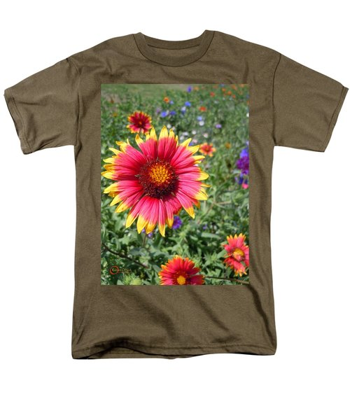 Men's T-Shirt  (Regular Fit) featuring the photograph Wild Red Daisy #1 by Robert ONeil