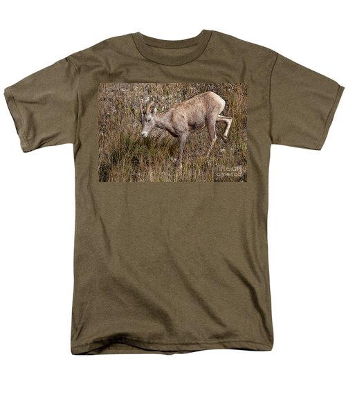 Bighorn Ewe Men's T-Shirt  (Regular Fit) by Ronald Lutz