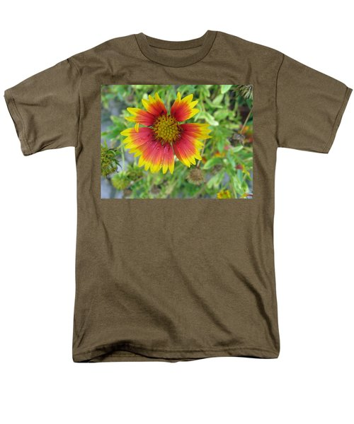 Men's T-Shirt  (Regular Fit) featuring the photograph A Beautiful Blanket Flower by Ashish Agarwal