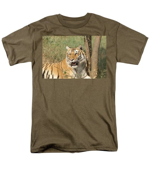A Tiger Lying Casually But Fully Alert Men's T-Shirt  (Regular Fit) by Ashish Agarwal