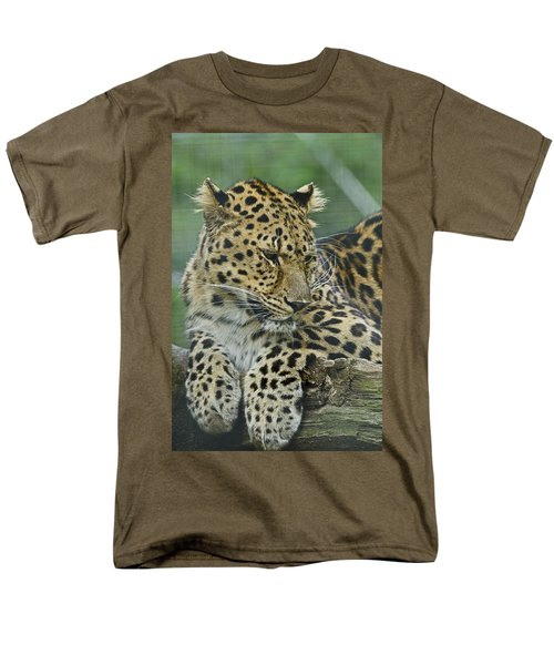 Amur Leopard Men's T-Shirt  (Regular Fit) by JT Lewis