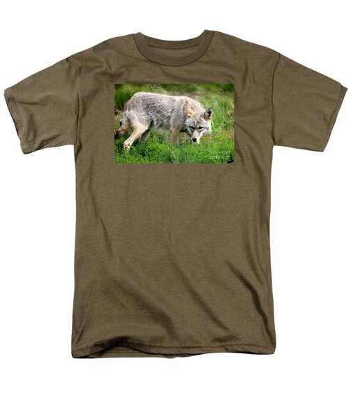 Men's T-Shirt  (Regular Fit) featuring the photograph Coyote On The Prowl by Kathy  White