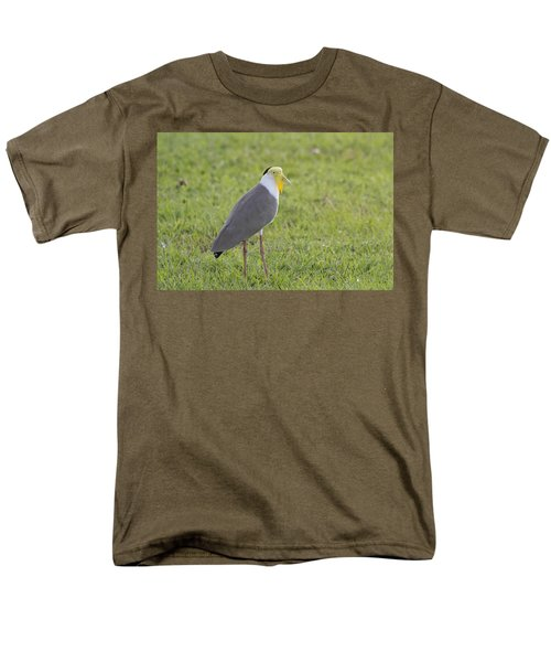 Masked Lapwing Men's T-Shirt  (Regular Fit) by Douglas Barnard