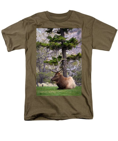 Men's T-Shirt  (Regular Fit) featuring the photograph On The Grass by Steve McKinzie