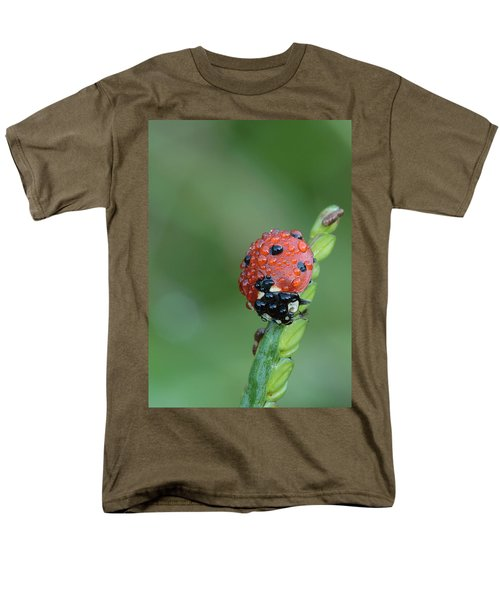 Men's T-Shirt  (Regular Fit) featuring the photograph Seven-spotted Lady Beetle On Grass With Dew by Daniel Reed