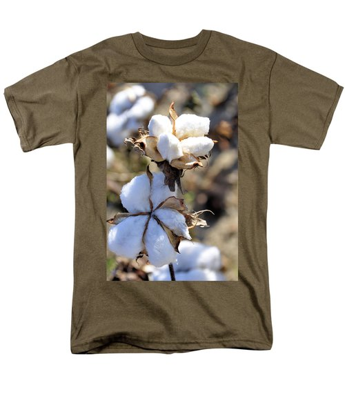 The Cotton Is Ready Men's T-Shirt  (Regular Fit)