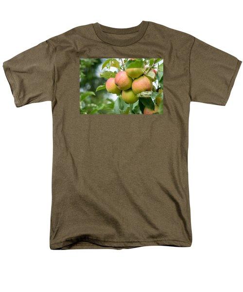 Apple Harvest Men's T-Shirt  (Regular Fit) by Sabine Edrissi
