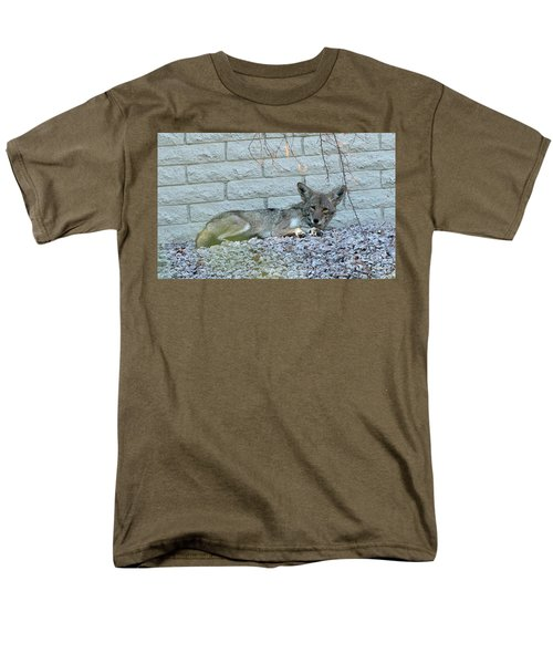 Men's T-Shirt  (Regular Fit) featuring the photograph Coyote by Anne Rodkin