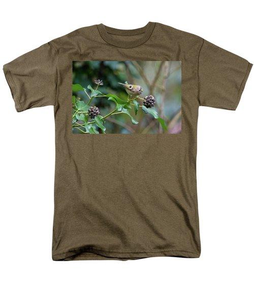 Goldcrest Men's T-Shirt  (Regular Fit) by Matt Malloy