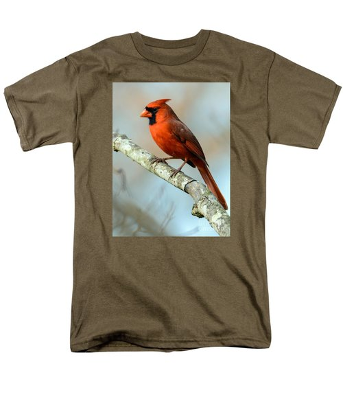 Male Cardinal Men's T-Shirt  (Regular Fit) by Debbie Green