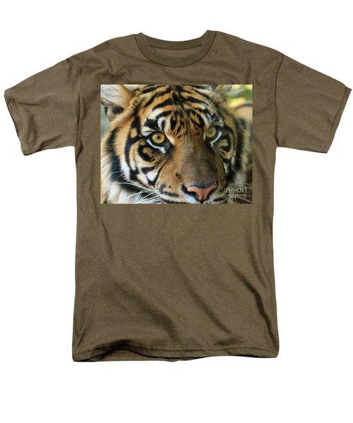 Tiger Men's T-Shirt  (Regular Fit)