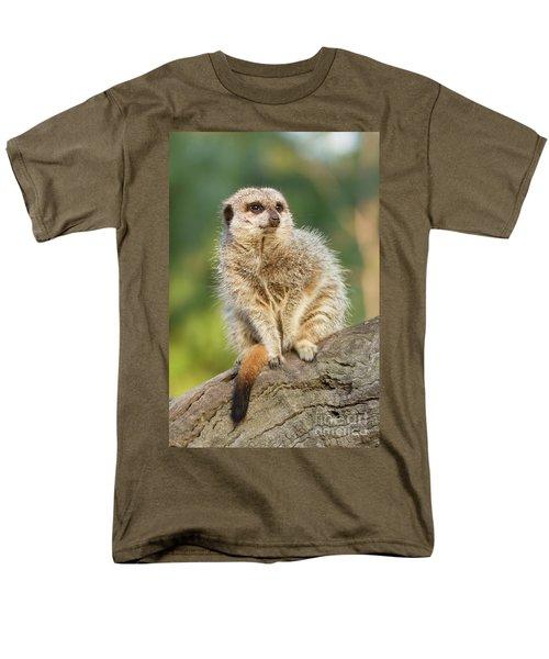 Meerkat Men's T-Shirt  (Regular Fit) by Craig Dingle