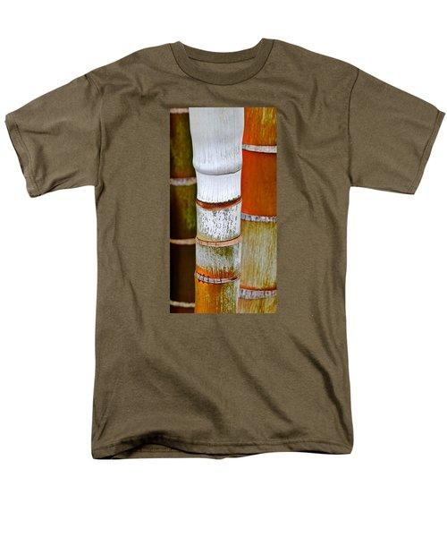 Bamboo Palm Men's T-Shirt  (Regular Fit) by Werner Lehmann