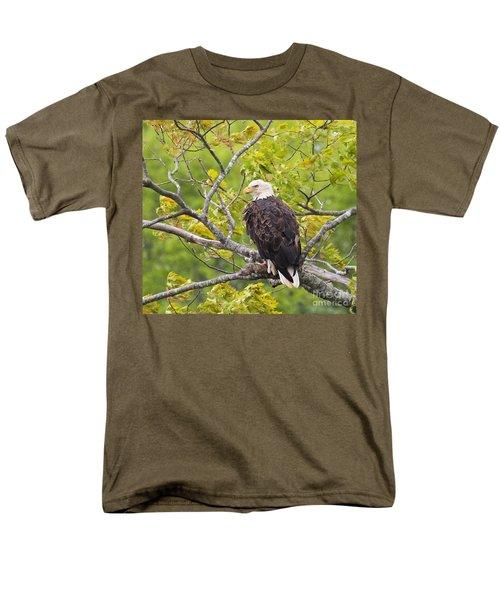Adult Bald Eagle Men's T-Shirt  (Regular Fit) by Debbie Stahre