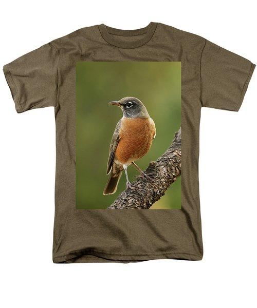American Robin Men's T-Shirt  (Regular Fit) by Doug Herr