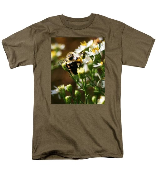 Bee And Spotted Cucumber Beetle On Aster Men's T-Shirt  (Regular Fit)
