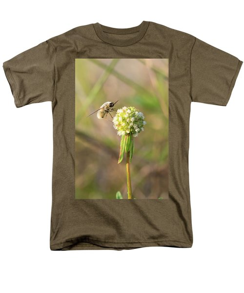 Bee Fly On A Wildflower Men's T-Shirt  (Regular Fit) by Christopher L Thomley