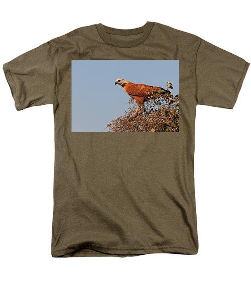 Black-collared Hawk, Pantanal Men's T-Shirt  (Regular Fit) by Aivar Mikko