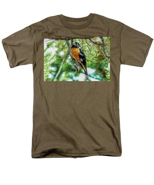 Black-headed Grosbeak On Pine Tree Men's T-Shirt  (Regular Fit) by Marilyn Burton
