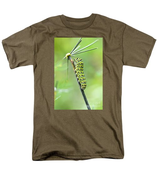 Black Swallowtail Caterpillar Men's T-Shirt  (Regular Fit) by Debbie Green