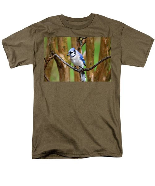 Blue Jay On A Branch Men's T-Shirt  (Regular Fit) by Trina Ansel