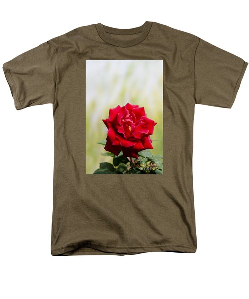 Bright Red Rose Men's T-Shirt  (Regular Fit) by Perry Van Munster
