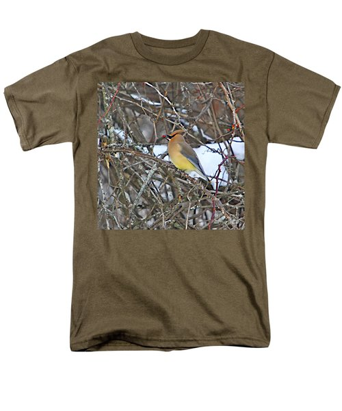 Cedar Wax Wing Men's T-Shirt  (Regular Fit) by Robert Pearson