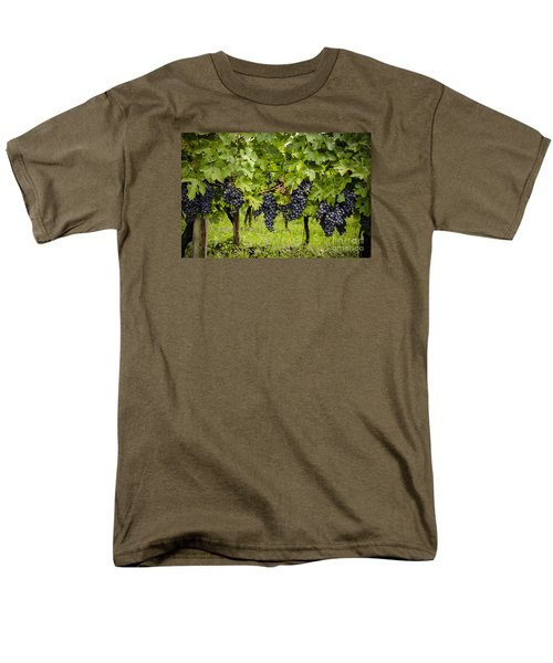 Chardonnay Grape Cluster Men's T-Shirt  (Regular Fit) by Perry Van Munster