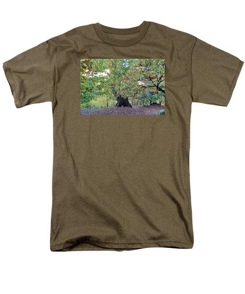 Chestnut Tree In Autumn Men's T-Shirt  (Regular Fit) by Goyo Ambrosio