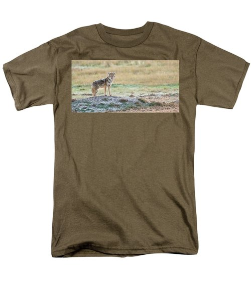Men's T-Shirt  (Regular Fit) featuring the photograph Coyotee by Kelly Marquardt