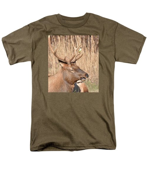 Creatures Great And Small Men's T-Shirt  (Regular Fit) by Alan Lenk