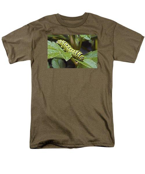Eastern Black Swallowtail Caterpillar IIi Men's T-Shirt  (Regular Fit) by Michael Peychich