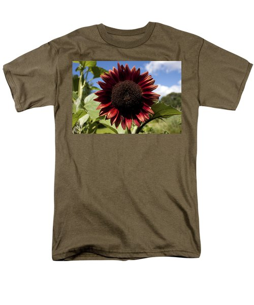 Men's T-Shirt  (Regular Fit) featuring the photograph Evening Sun Sunflower #2 by Jeff Severson