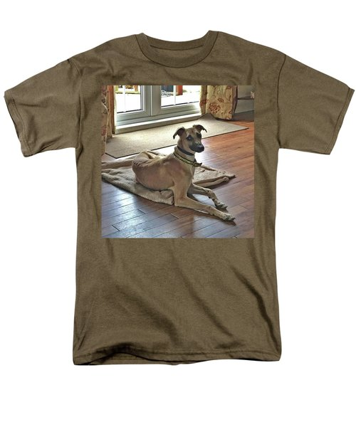 Finly - Ava The Saluki's New Companion Men's T-Shirt  (Regular Fit) by John Edwards