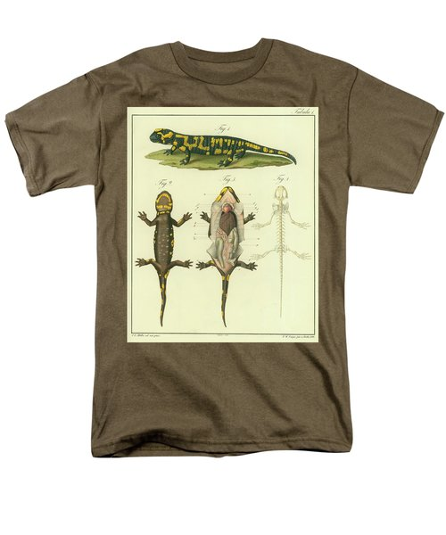 Men's T-Shirt  (Regular Fit) featuring the drawing Fire Salamander Anatomy by Christian Leopold Mueller