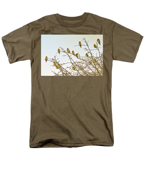 Flock Of Cedar Waxwings  Men's T-Shirt  (Regular Fit) by Geraldine Scull
