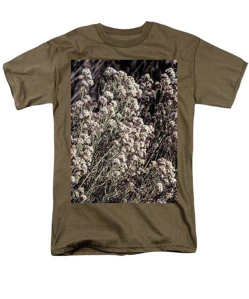 Fluff And Seeds Men's T-Shirt  (Regular Fit) by John Brink