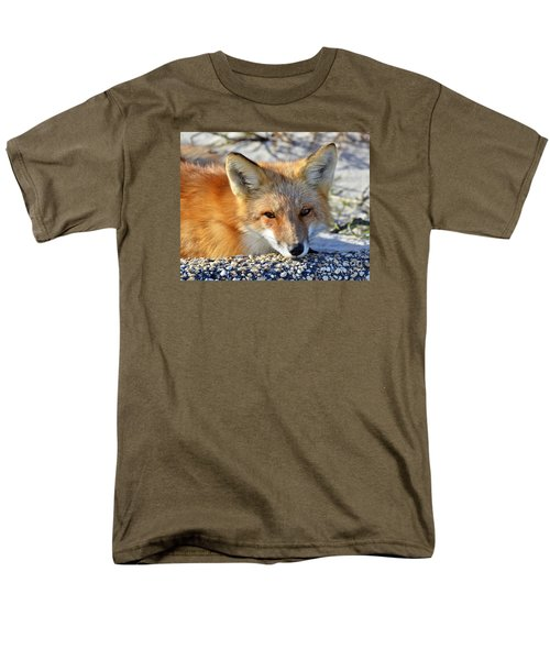 Men's T-Shirt  (Regular Fit) featuring the photograph Fox Posing For Me by Sami Martin