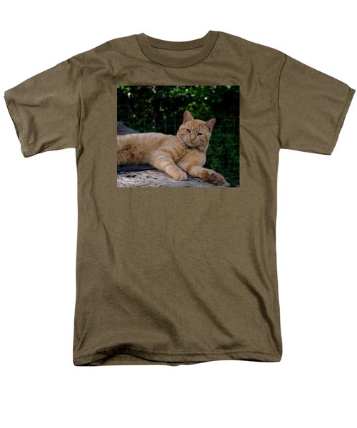 Franklin Men's T-Shirt  (Regular Fit) by Karen Harrison
