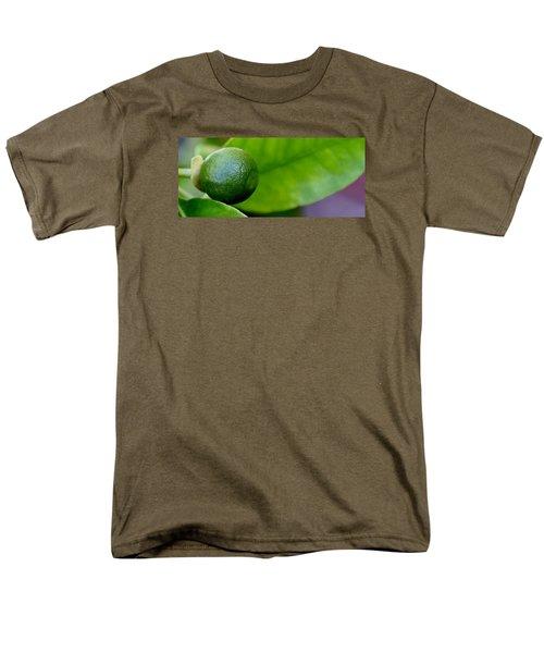 Gapefruit Men's T-Shirt  (Regular Fit) by Werner Lehmann