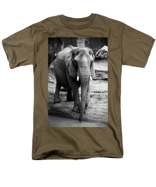 Men's T-Shirt  (Regular Fit) featuring the photograph Gentle One by Karol Livote