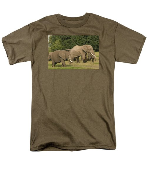 Grazing Elephants Men's T-Shirt  (Regular Fit) by Gary Hall