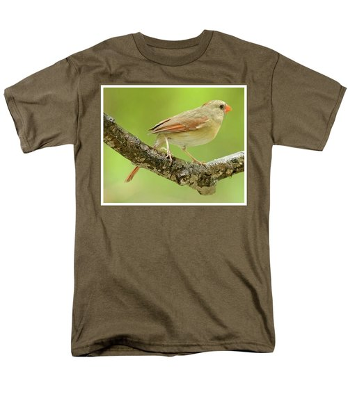 Juvenile, Female Cardinal, Animal Portrait Men's T-Shirt  (Regular Fit) by A Gurmankin