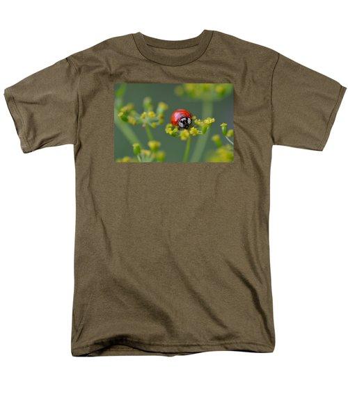 Ladybug In Red Men's T-Shirt  (Regular Fit) by Janet Rockburn